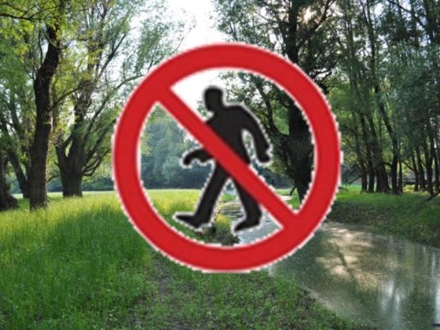 Erdőjárási tilalom