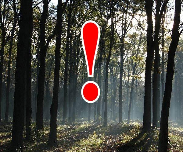 Erdőlátogatási tilalom