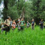 Erdőkerülés