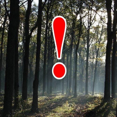 Erdőjárási korlátozások