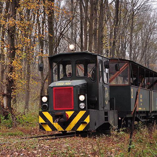 Az erdei vasút menetrendje