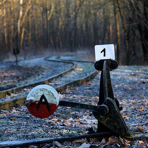 Az erdei vasút tavaszi menetrendje